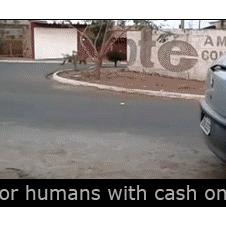 Fishing for humans with cash on a string
