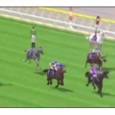 A horse race gets wacky.