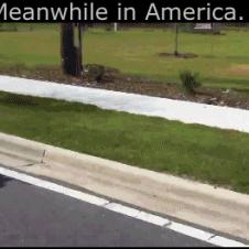 Meanwhile-in-America