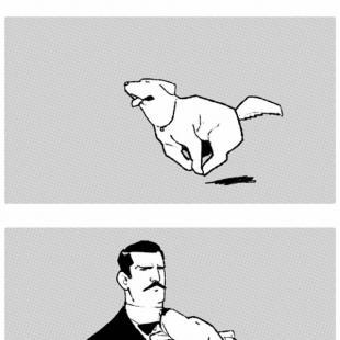 개주인과 고양이 집사의 차이