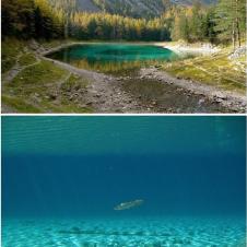 오스트리아의 신기한 호수 공원
