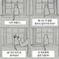 나는 고독한 고양이