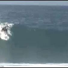 Surfing_Rodeo_flip