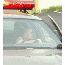 Cop-vs-door