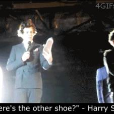 Harry-Styles-hit-by-shoe