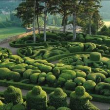 화려한 정원