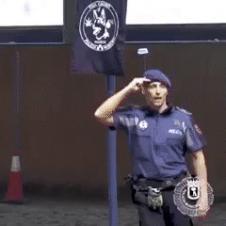 경찰견 훈련 장면