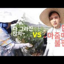 따뜻한 어머니 vs 한국 아줌마가 싫은 외국인🇺🇸
