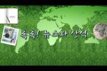 [톡톡] 추억의 싸이월드, 3월에 부활한다 – 2.5(금) 톡톡! 뉴스와 상식/ YTN 라디오