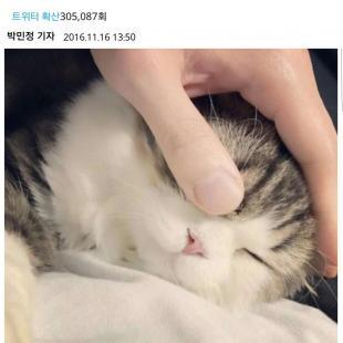 설현이 최태준 인스타그램에 남겼다가 삭제한 댓글