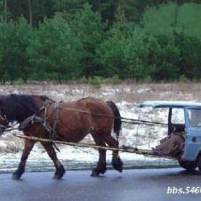 환경보호 자동차