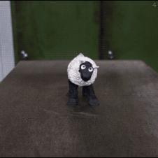 Hydraulic-press-sheep