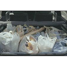 Carrying-shopping-bags