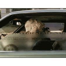 George-Washington-car-window-dollar-bill