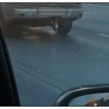 Hang-on-Woody-car-bumper