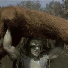 Hulk-throws-bear