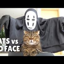 Cats vs No-Face