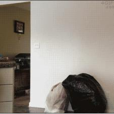Trash bag prank