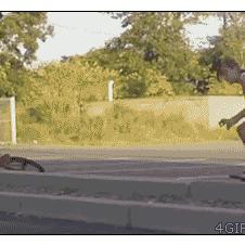 Skateboarder-perineum-buster