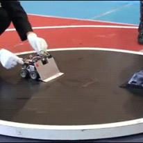 Japanese-sumo-robots-fight