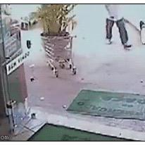 Robber vs old man