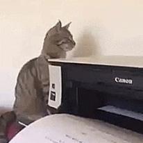 프린터 동기화