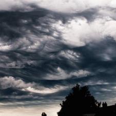 실제로 보면 오줌 지린다는 구름